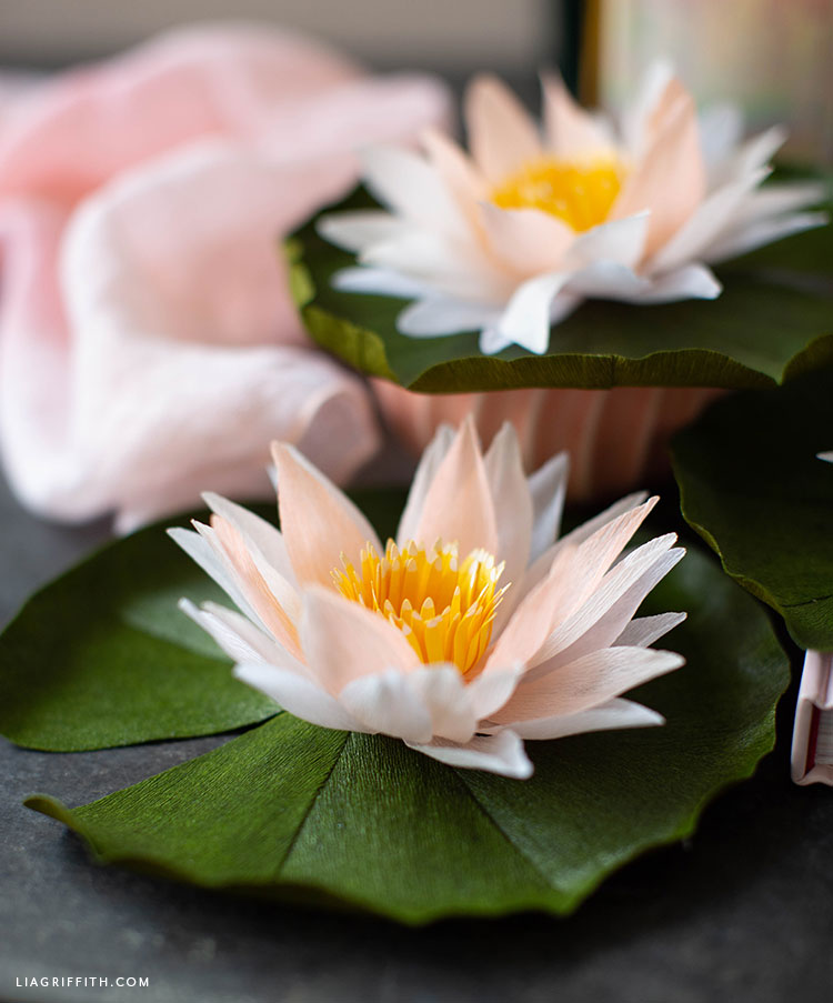 Topper Memory Waterlily.July Member Make Live Video Crepe Paper Water Lily Lia
