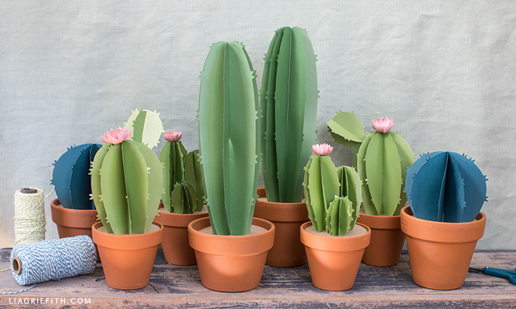 handmade frosted paper cacti plants