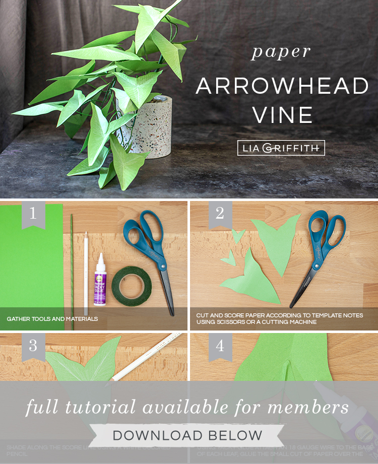 Photo tutorial for paper arrowhead vine by Lia Griffith