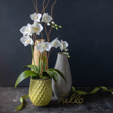 August Member Make Live Video: Crepe Paper Phalaenopsis Orchid