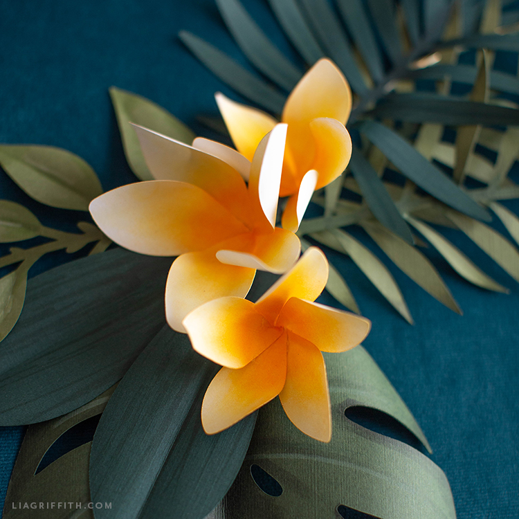 frosted paper plumerias and tropical leaves