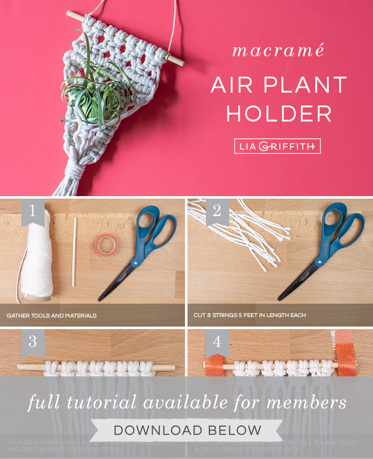 DIY tutorial for macrame air plant holder by Lia Griffith