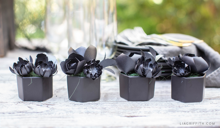 black paper succulents in mini black pots