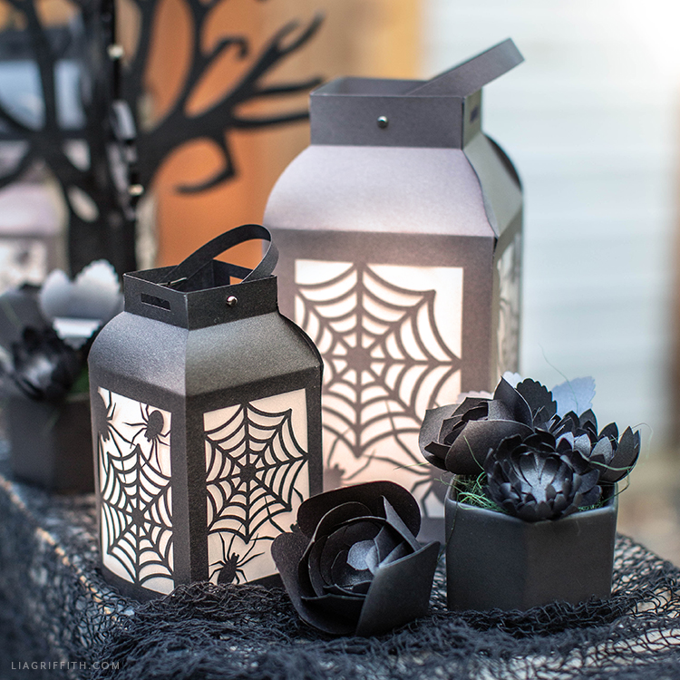 paper spider web lanterns and black paper succulents
