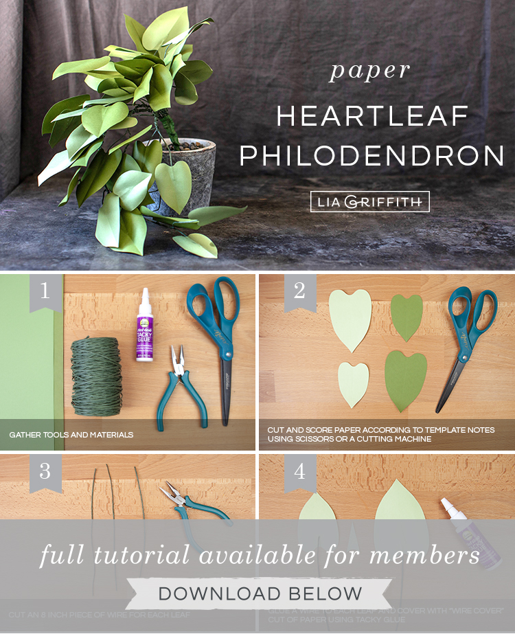 Photo tutorial for paper heartleaf philodendron by Lia Griffith