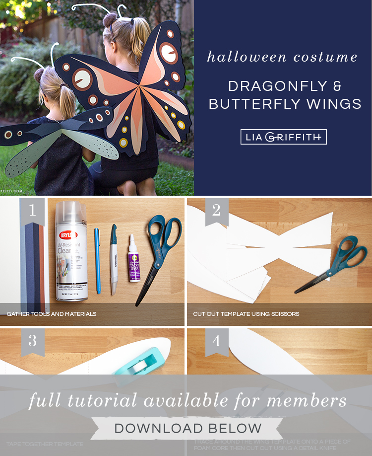 photo tutorial for dragonfly and butterfly wings by Lia Griffith
