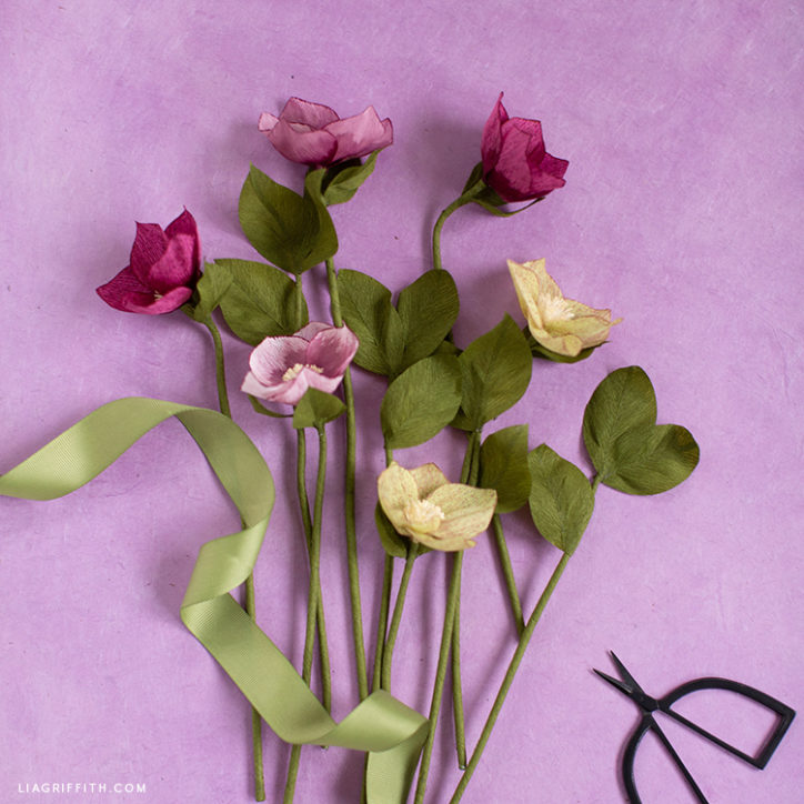 handmade crepe paper hellebore flowers
