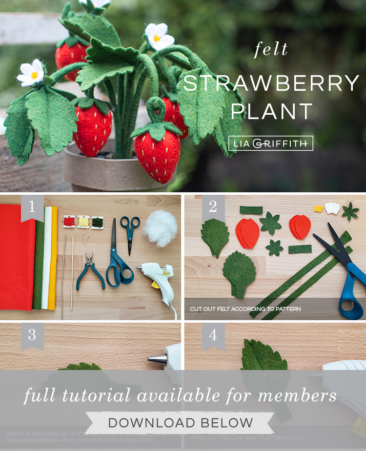 Photo tutorial for felt strawberry plant by Lia Griffith