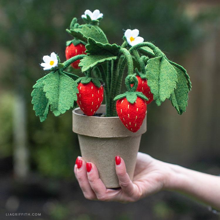 DIY felt strawberry plant