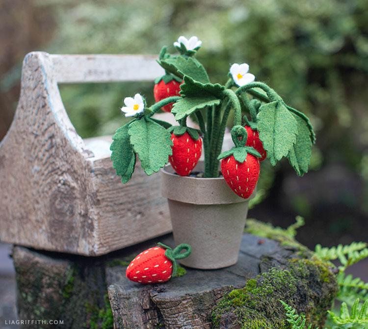 handmade felt strawberry plant