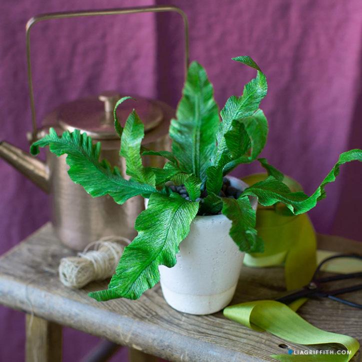 easy crepe paper bird's nest fern