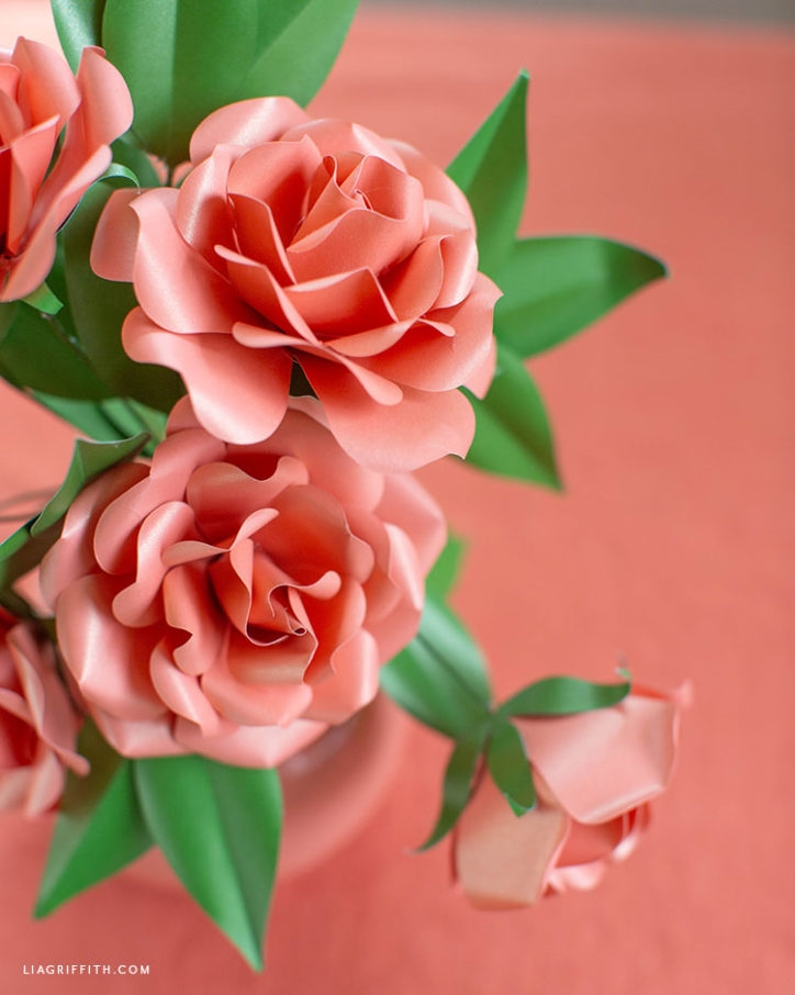 frosted paper lolita coral roses