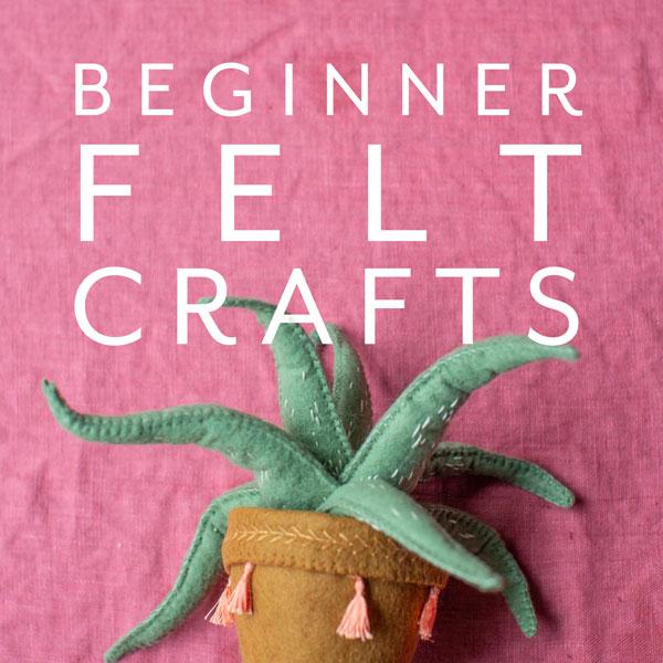Beginner Felt Crafts