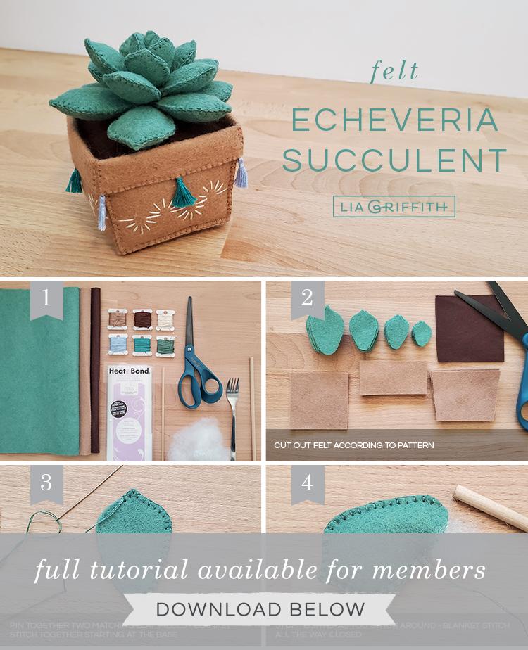 Photo tutorial for felt echeveria succulent by Lia Griffith