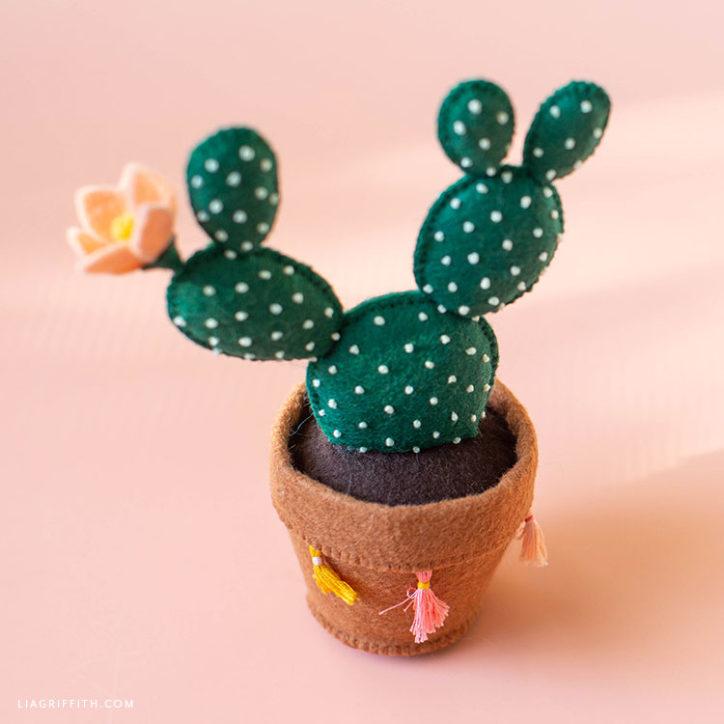 felt bunny ear cactus in bloom