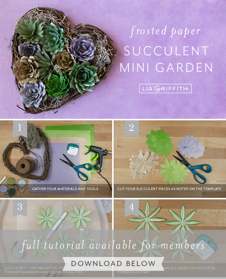 Photo tutorial for frosted paper succulent mini garden by Lia Griffith