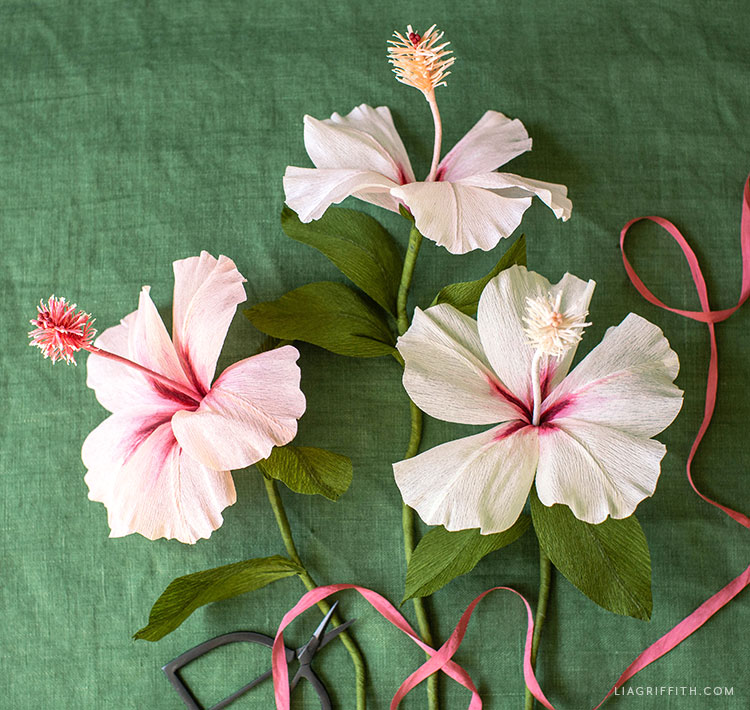 handmade crepe paper hibiscus flowers
