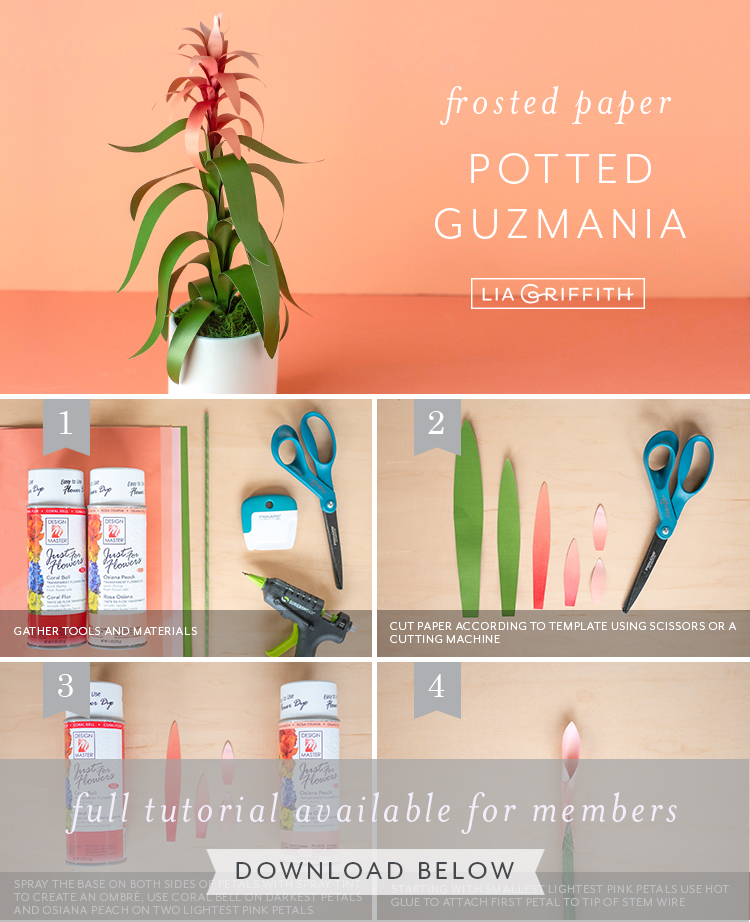 Photo tutorial for frosted paper guzmania by Lia Griffith