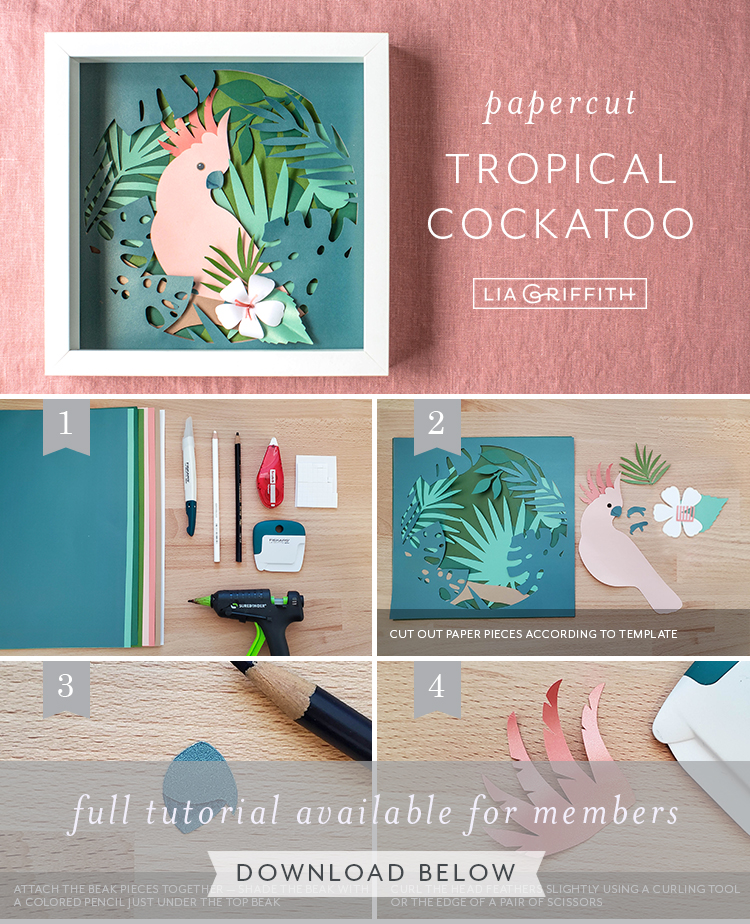 Photo tutorial for papercut cockatoo tropical art by Lia Griffith