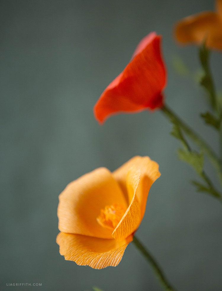 extra fine crepe paper California poppies
