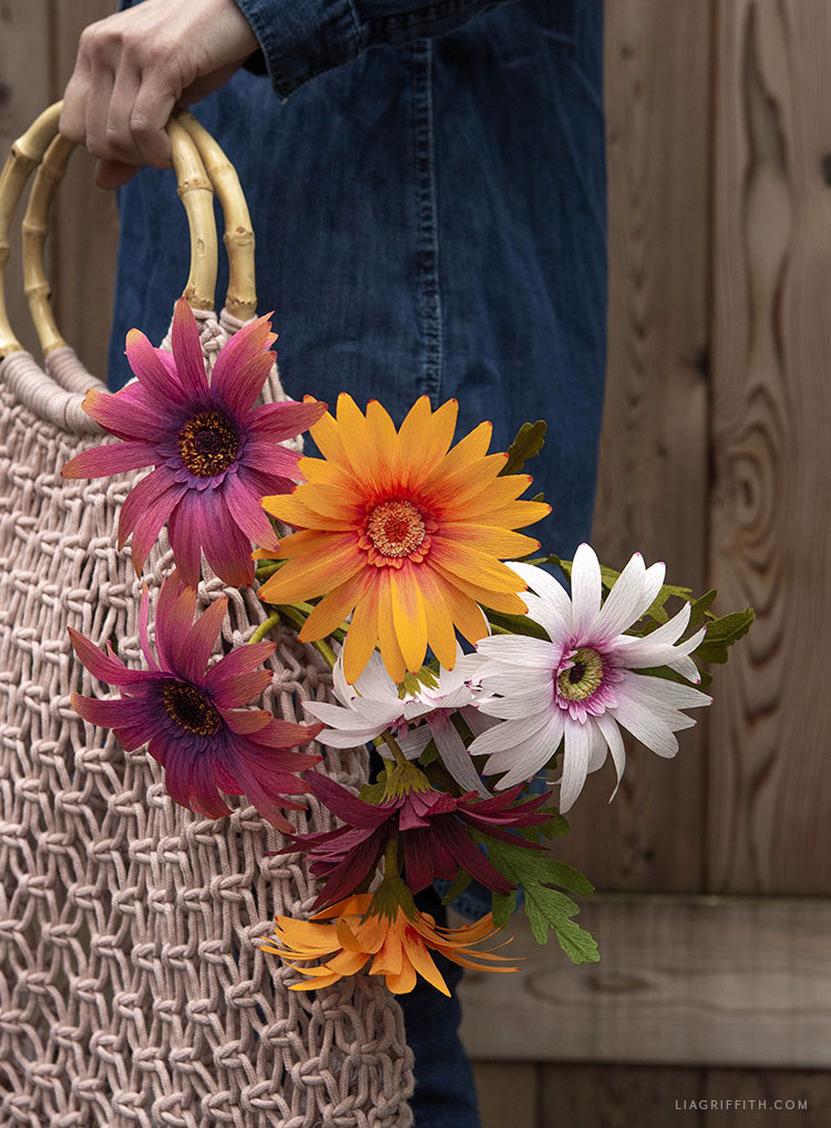 crepe paper African daisy flowers