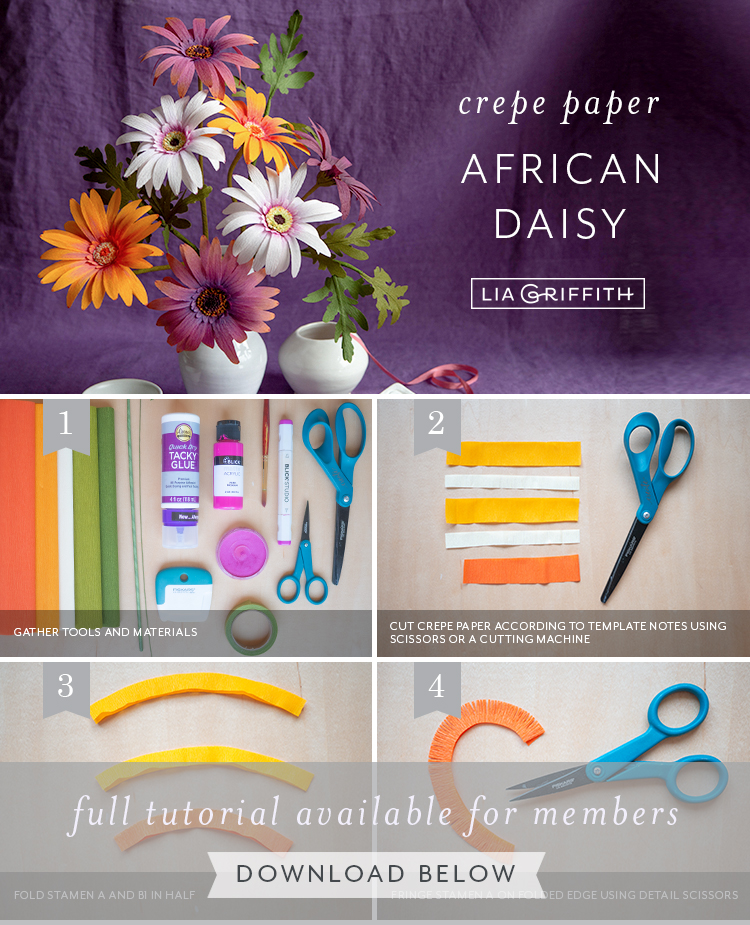 Photo tutorial for crepe paper African daisy by Lia Griffith
