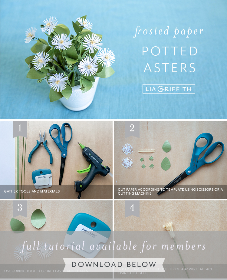 photo tutorial for frosted paper potted asters by Lia Griffith