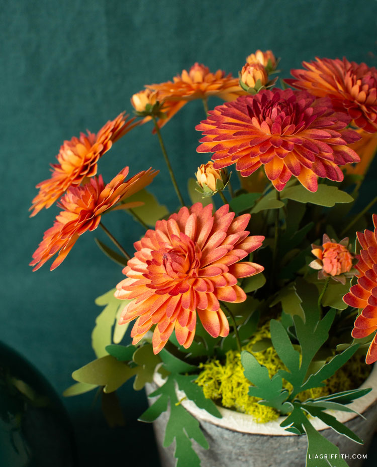 frosted paper mums