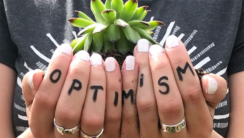 optimism written on fingers holding a seedling