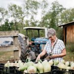 From Farm to Fork 11