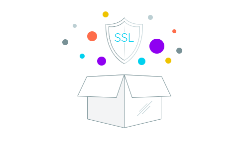 SSL Secure out of the box