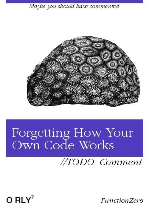 forgetting-how-your-own-code-works