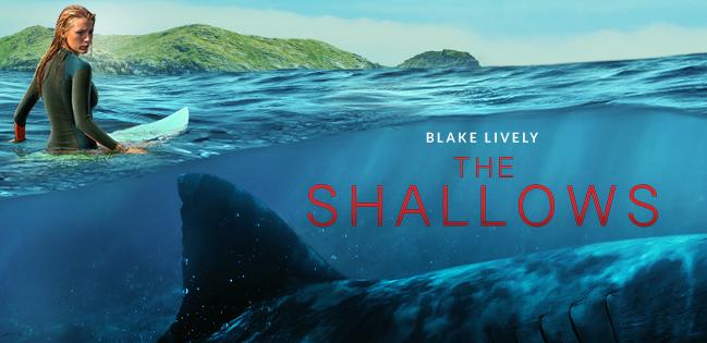 the shallows artwork cs
