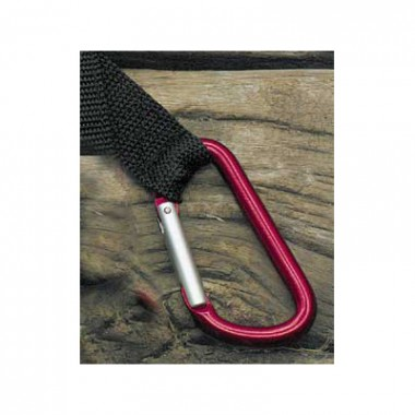 Quick Release Webbing With Carabiner