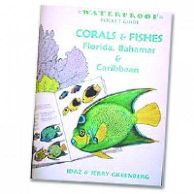 waterproof Guide to Coral and Fish Book