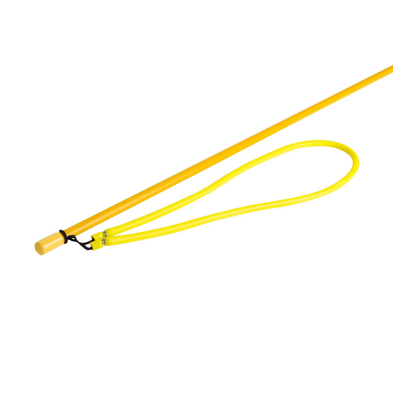 Trident 7ft Paralyzer Pole Spear