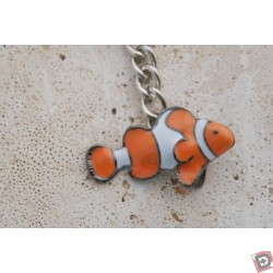 Image from clown fish key chain