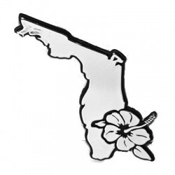 Image from Florida Surf Car Emblem