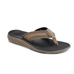 Image from Reef Phoenix Sandal (Men's)