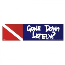 Image from Gone Down Lately Bumper Sticker