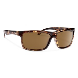 Image from Forecast Optics Ajay Tortoise/ Brown