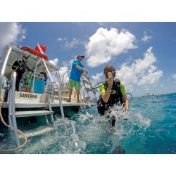 Image from PADI Rescue Diver Course eLearning