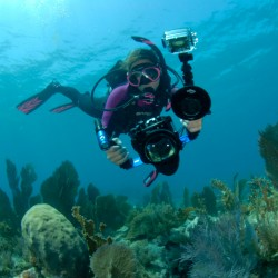 Image from PADI Digital Underwater Photography Specialty