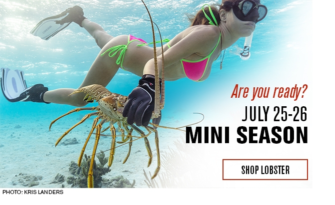Shop Lobster Gear