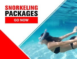 Scuba Gear and Snorkeling Packages