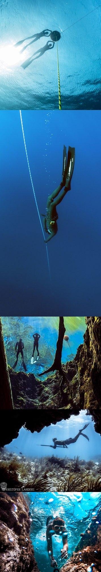 Freediving Course Orlando