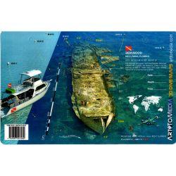 Benwood 3D Dive Card