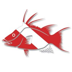 Dive Flag Hogfish Decal