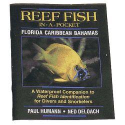 Reef Fish Pocket Guide