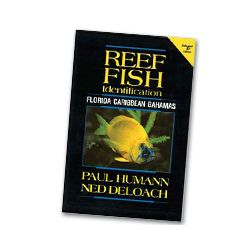 Humann Reef Fish ID Book - Scuba Diving Book